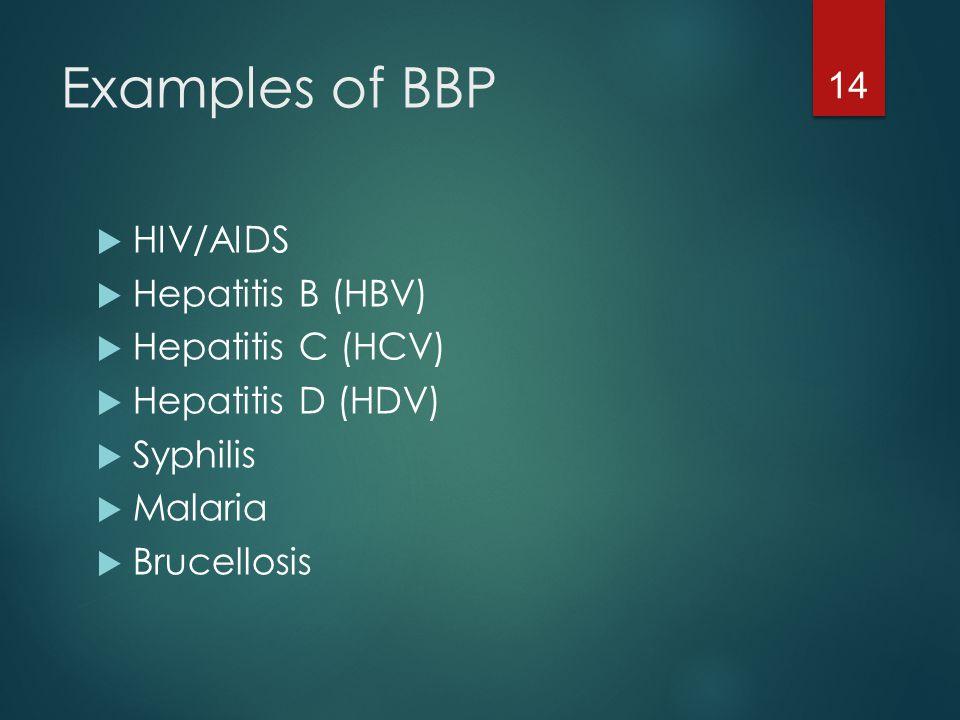 Examples of BBP HIV/AIDS Hepatitis B (HBV) Hepatitis C (HCV)