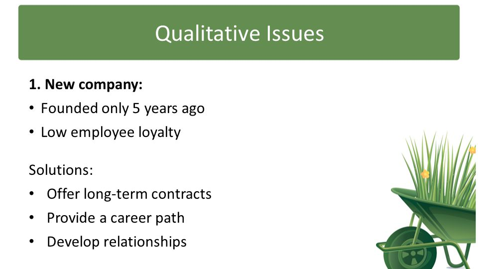 Qualitative Issues 1. New company: Founded only 5 years ago