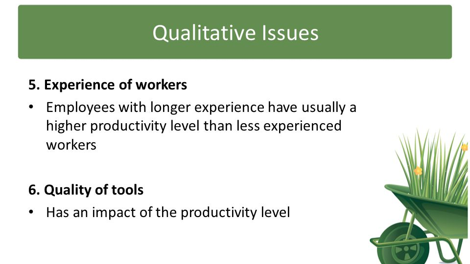 Qualitative Issues 5. Experience of workers