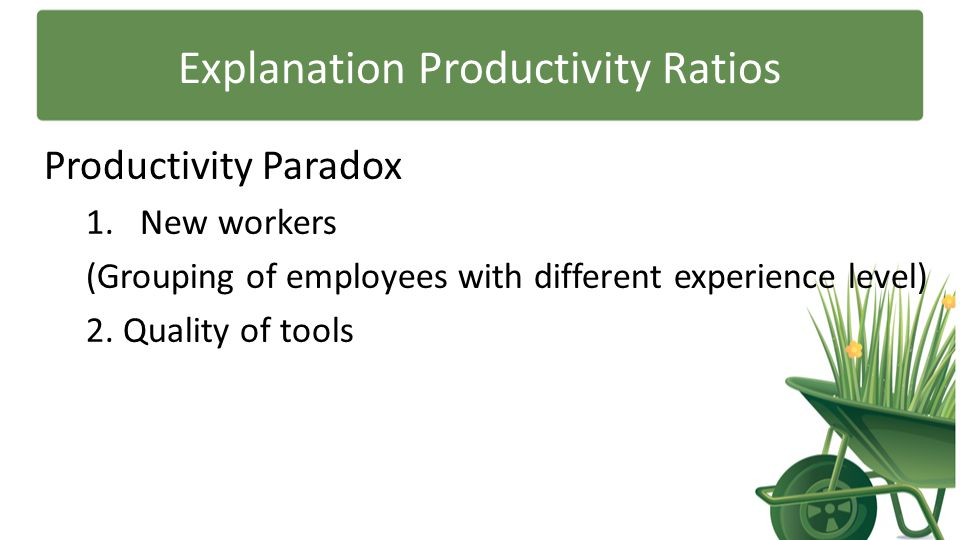 Explanation Productivity Ratios