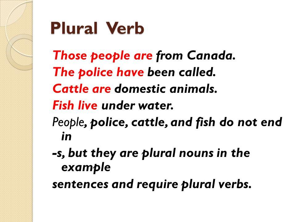 Plural Verb