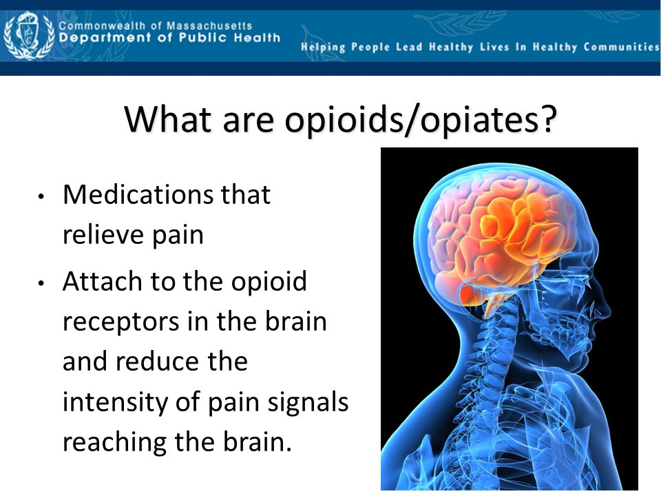What are opioids/opiates