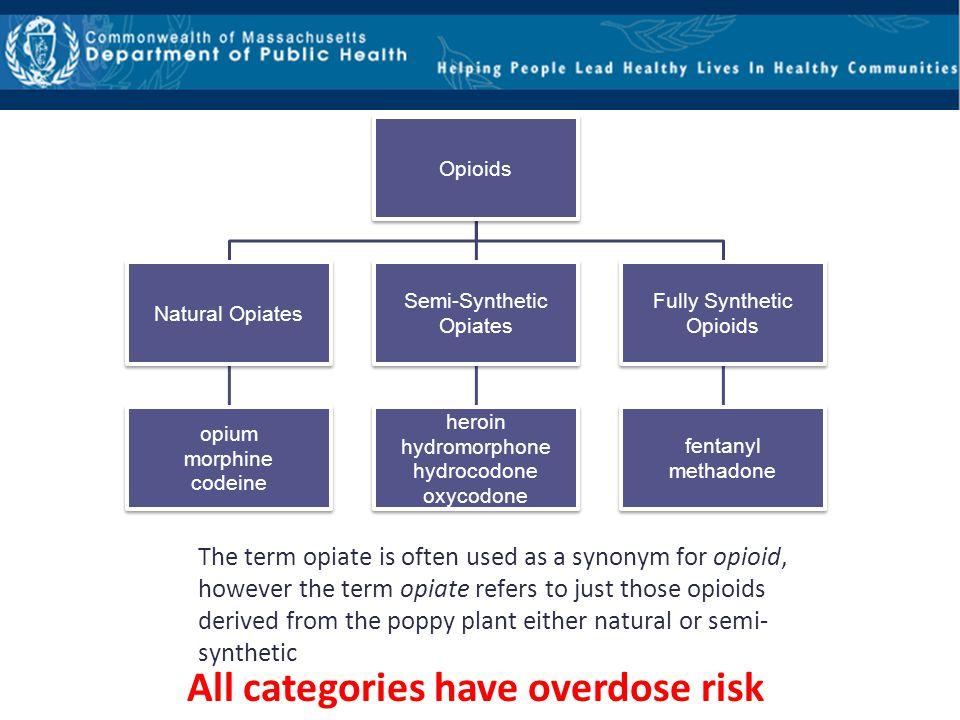 All categories have overdose risk
