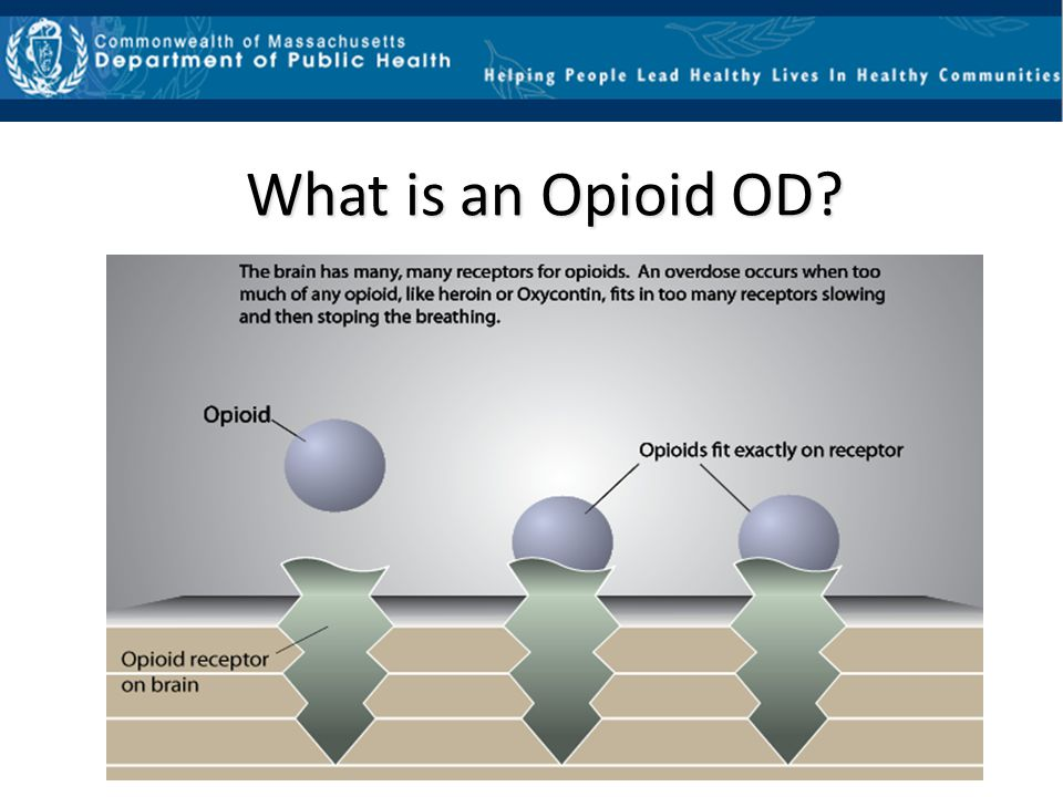 What is an Opioid OD