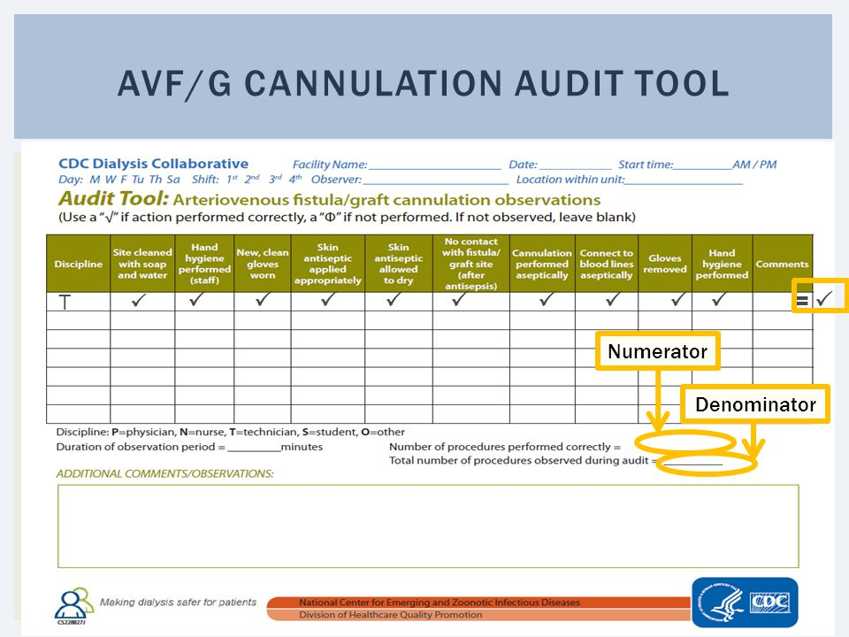 AVF/G cannulation audit tool