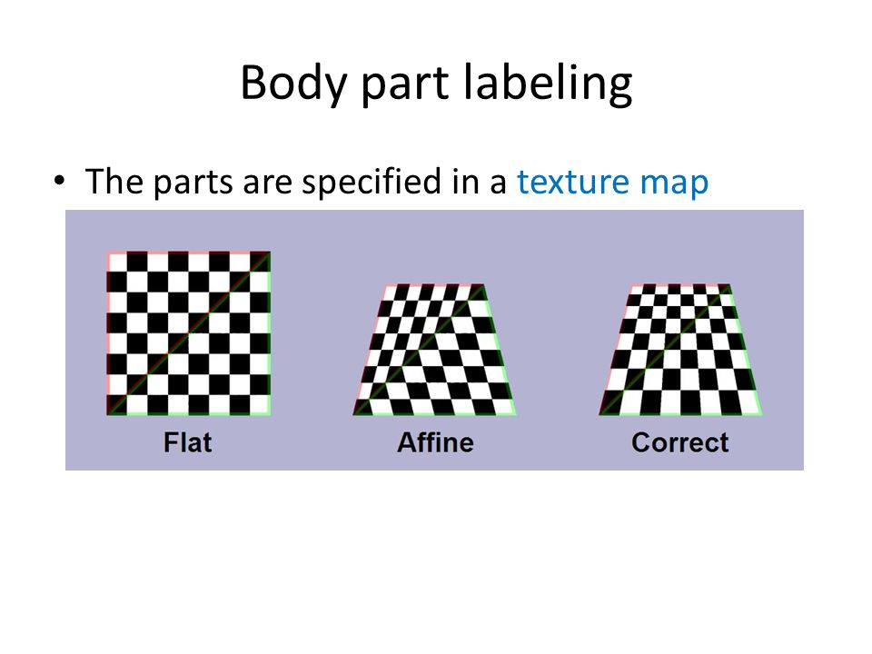 Body part labeling The parts are specified in a texture map