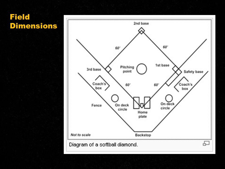Field Dimensions