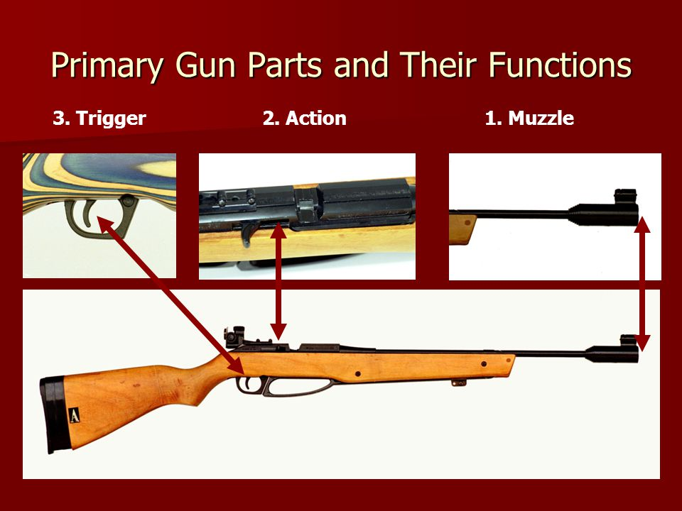 Primary Gun Parts and Their Functions