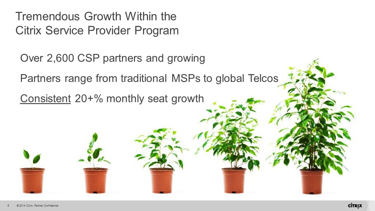 Tremendous Growth Within the Citrix Service Provider Program