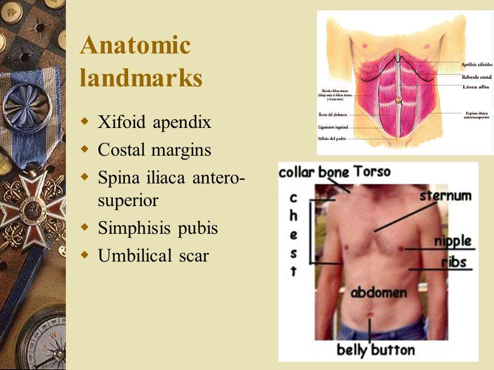 Anatomic landmarks Xifoid apendix Costal margins