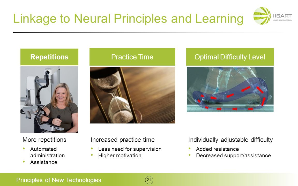 Linkage to Neural Principles and Learning
