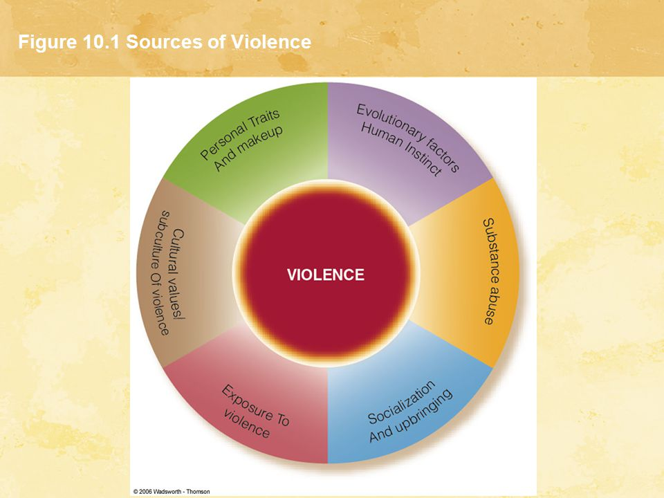 Figure 10.1 Sources of Violence