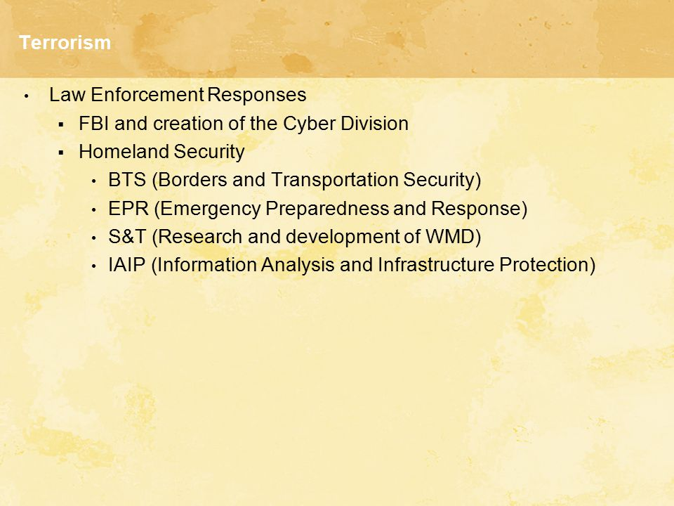 Terrorism Law Enforcement Responses. FBI and creation of the Cyber Division. Homeland Security. BTS (Borders and Transportation Security)