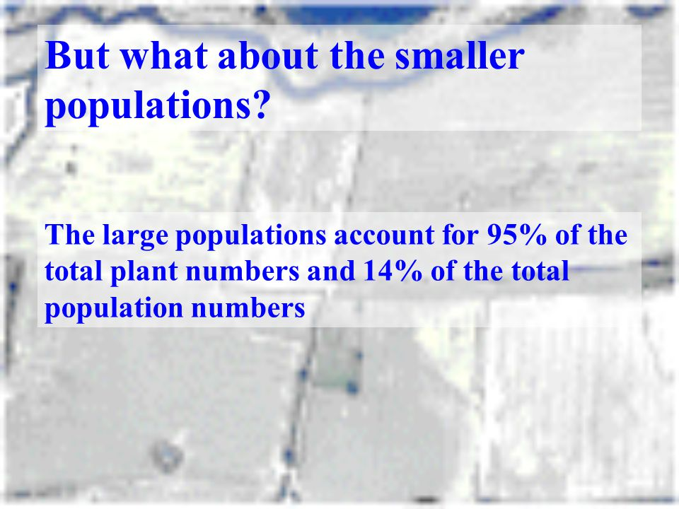 But what about the smaller populations