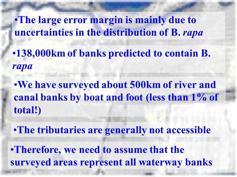 The large error margin is mainly due to uncertainties in the distribution of B. rapa