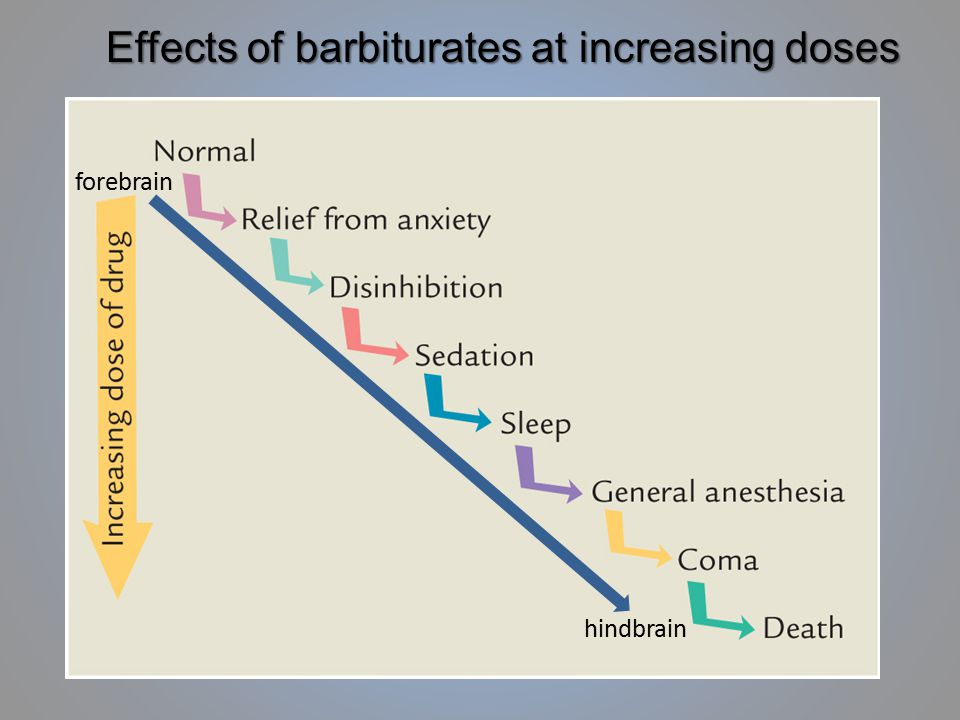 Effects of barbiturates at increasing doses