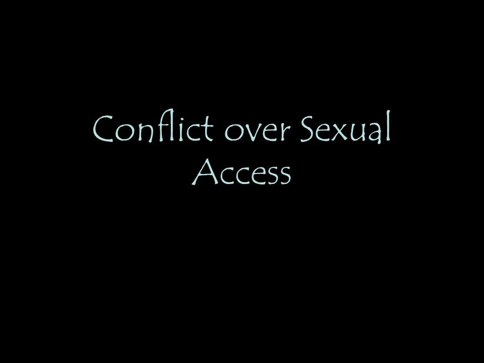 Conflict over Sexual Access