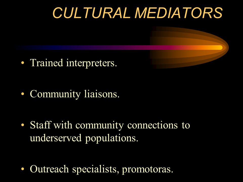 CULTURAL MEDIATORS Trained interpreters. Community liaisons.