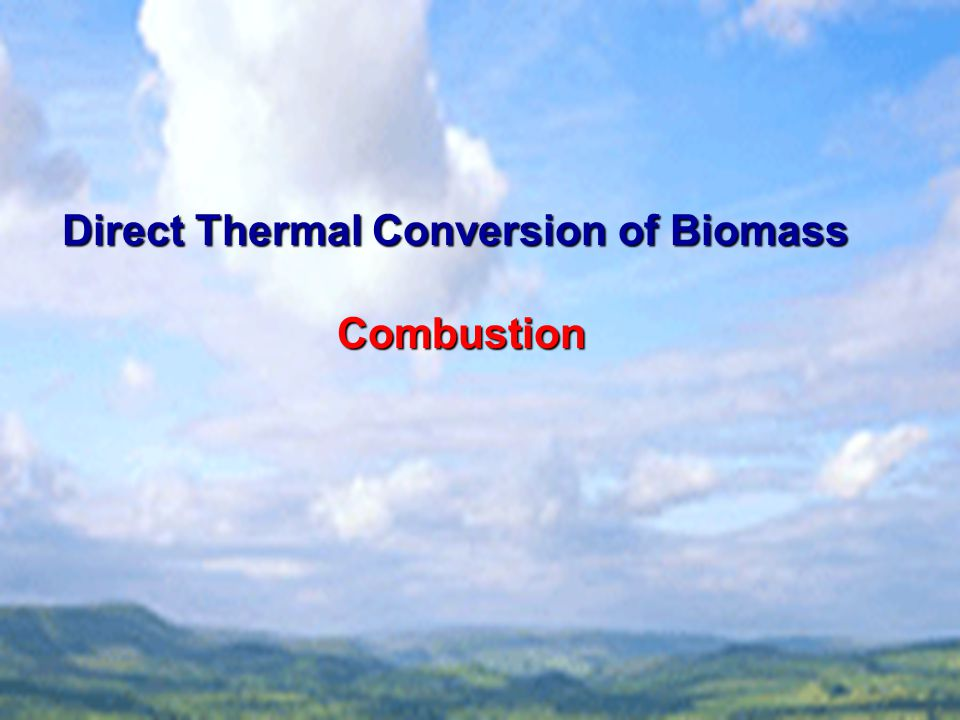 Direct Thermal Conversion of Biomass Combustion