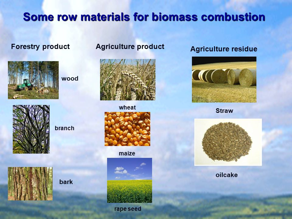 Some row materials for biomass combustion