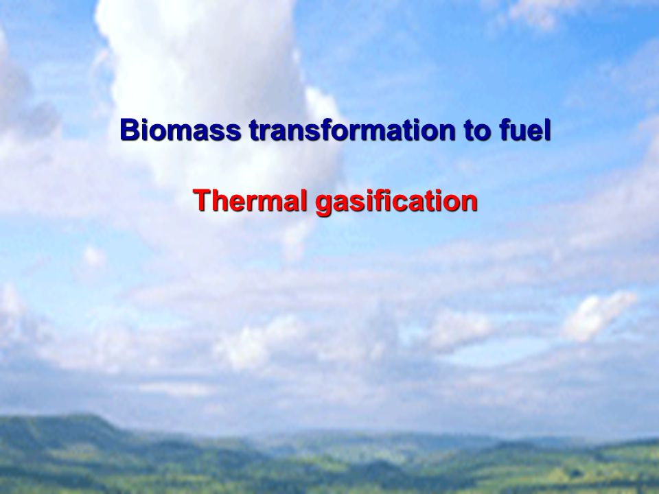 Biomass transformation to fuel Thermal gasification