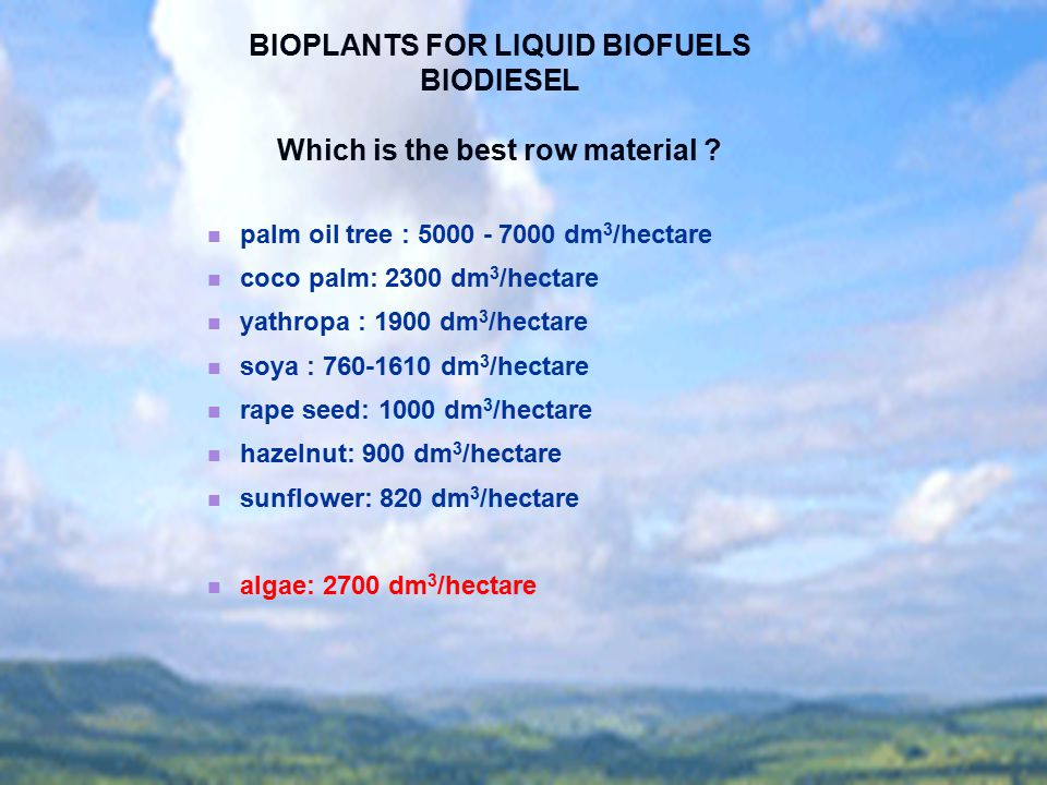 BIOPLANTS FOR LIQUID BIOFUELS Which is the best row material