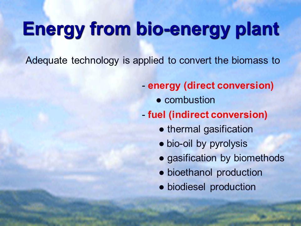 Energy from bio-energy plant