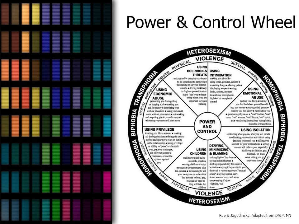 Power & Control Wheel Roe & Jagodinsky. Adapted from DAIP, MN