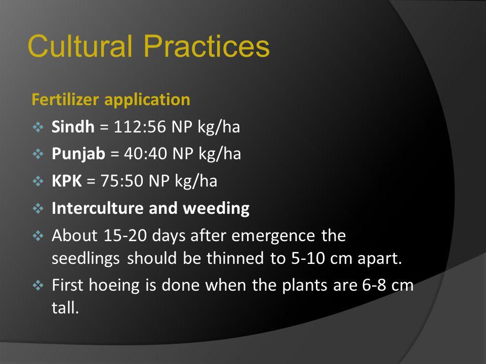 Cultural Practices Fertilizer application Sindh = 112:56 NP kg/ha