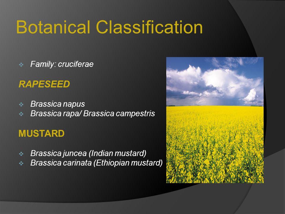 Botanical Classification