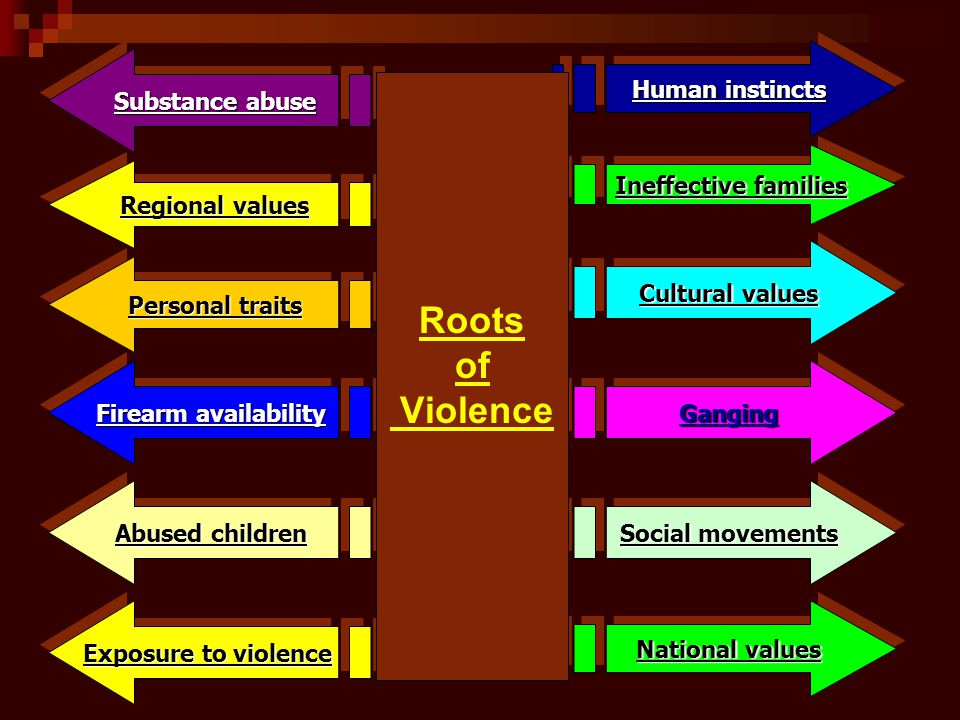 Roots of Violence Human instincts Substance abuse Ineffective families