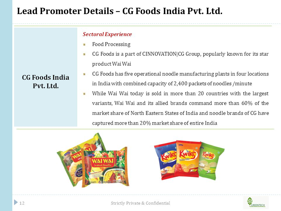 Lead Promoter Details – CG Foods India Pvt. Ltd.