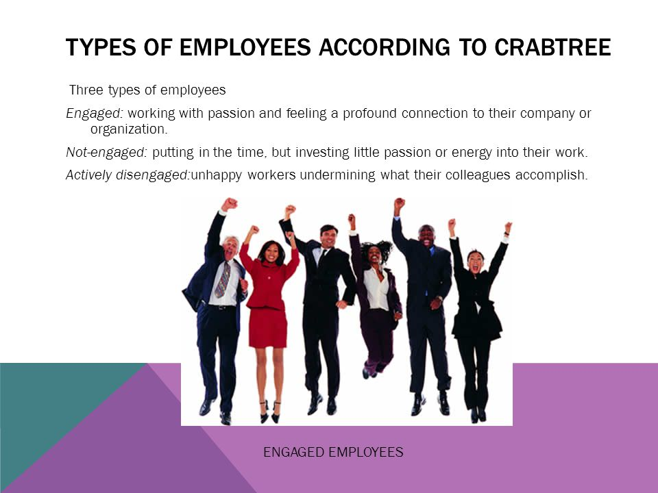 Types of employees according to crabtree