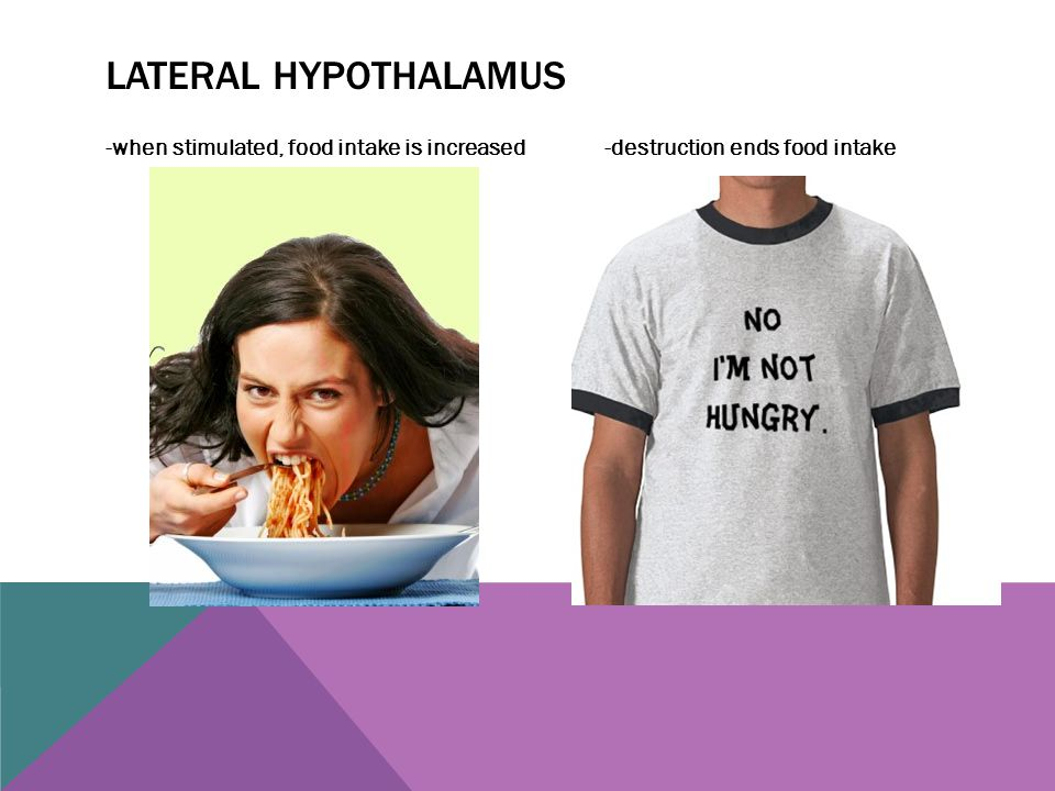 Lateral hypothalamus -when stimulated, food intake is increased -destruction ends food intake.