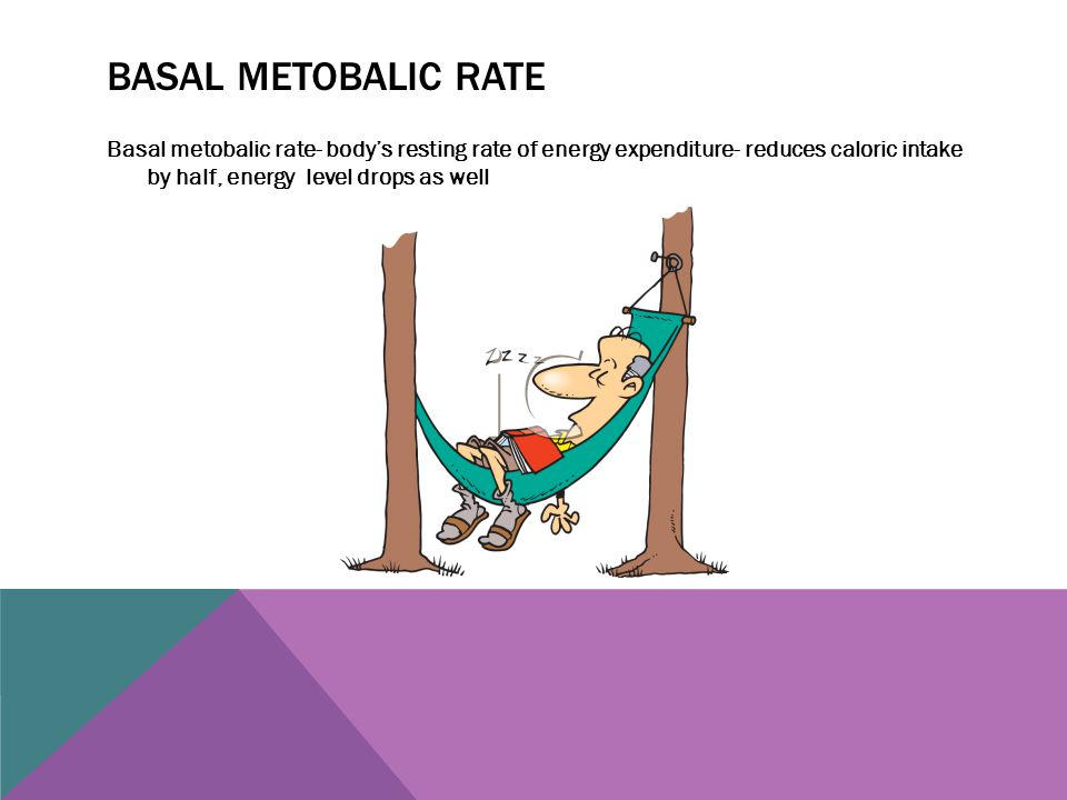 Basal metobalic rate Basal metobalic rate- body's resting rate of energy expenditure- reduces caloric intake by half, energy level drops as well.