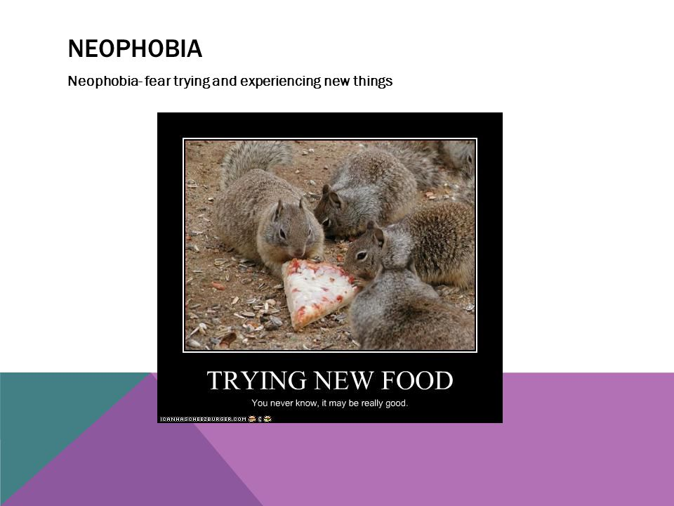 Neophobia Neophobia- fear trying and experiencing new things