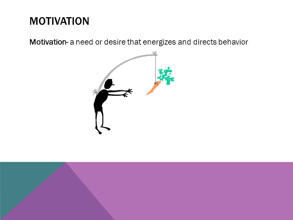 MOTIVATION Motivation- a need or desire that energizes and directs behavior