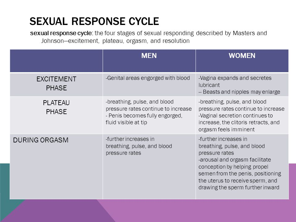 Sexual response cycle MEN WOMEN EXCITEMENT PHASE PLATEAU DURING ORGASM