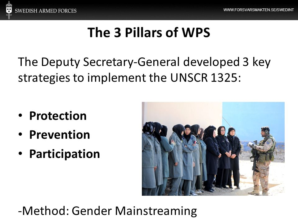 The 3 Pillars of WPS The Deputy Secretary-General developed 3 key strategies to implement the UNSCR 1325: