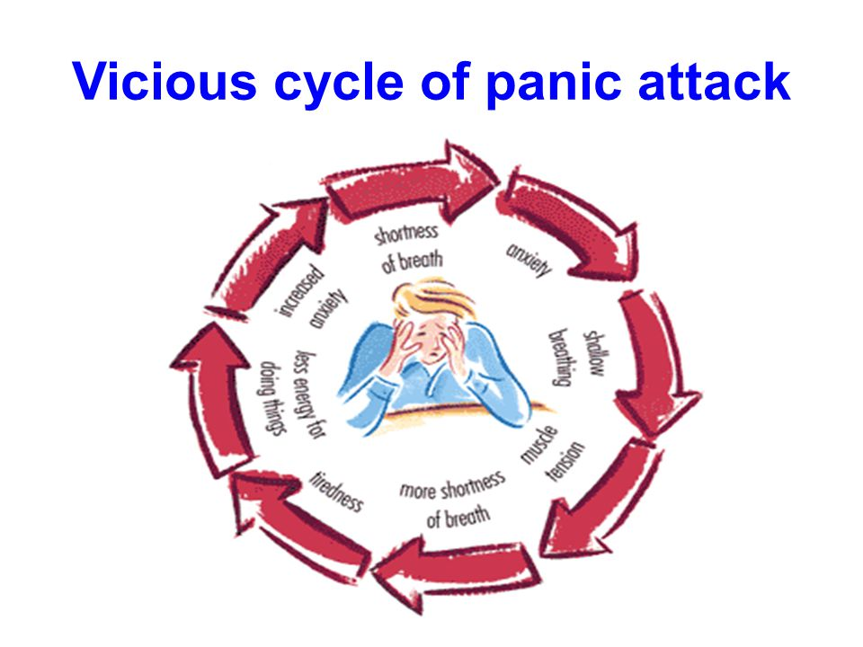 Vicious cycle of panic attack