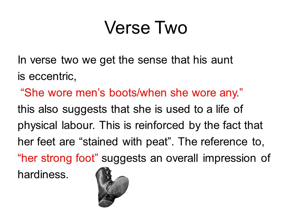 Verse Two In verse two we get the sense that his aunt is eccentric,