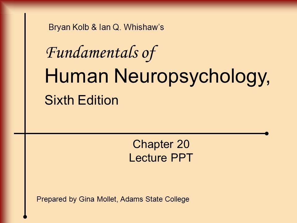 Human Neuropsychology,
