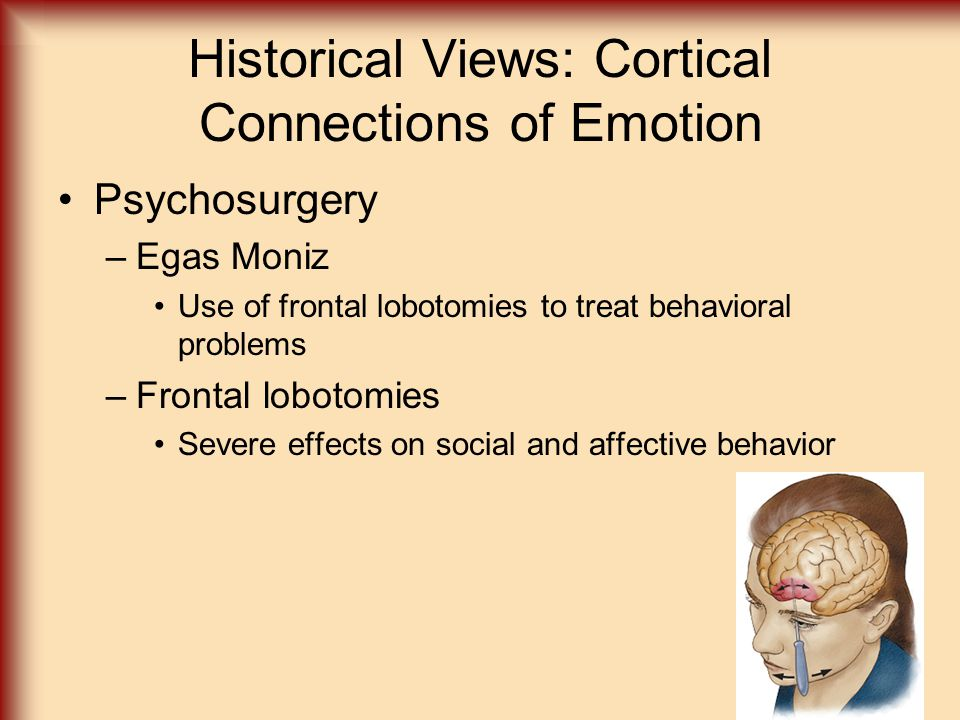 Historical Views: Cortical Connections of Emotion