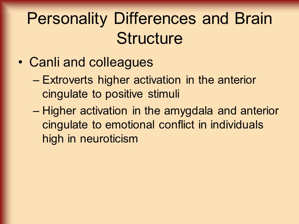 Personality Differences and Brain Structure
