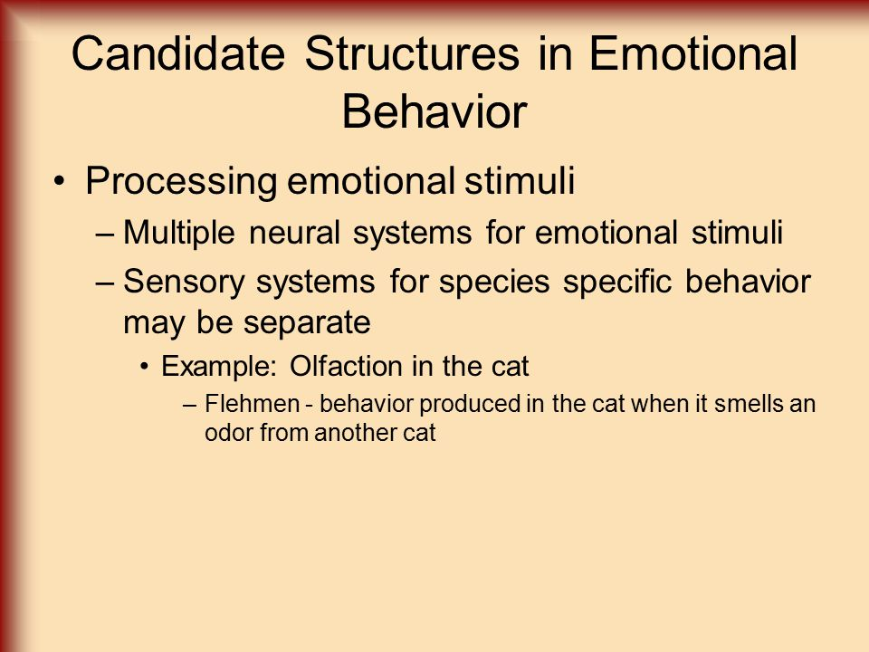 Candidate Structures in Emotional Behavior