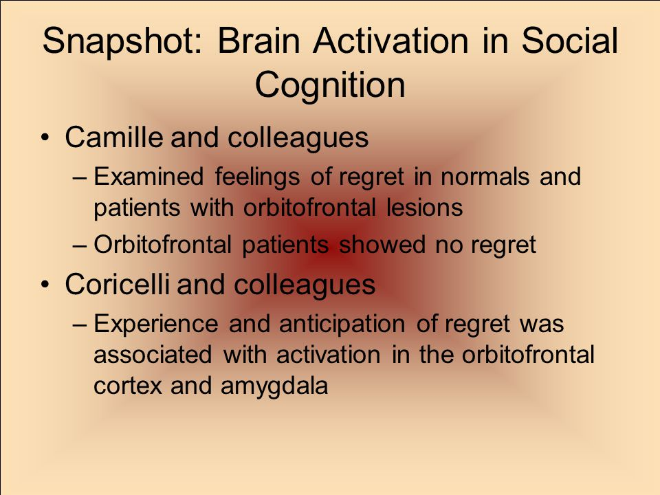 Snapshot: Brain Activation in Social Cognition