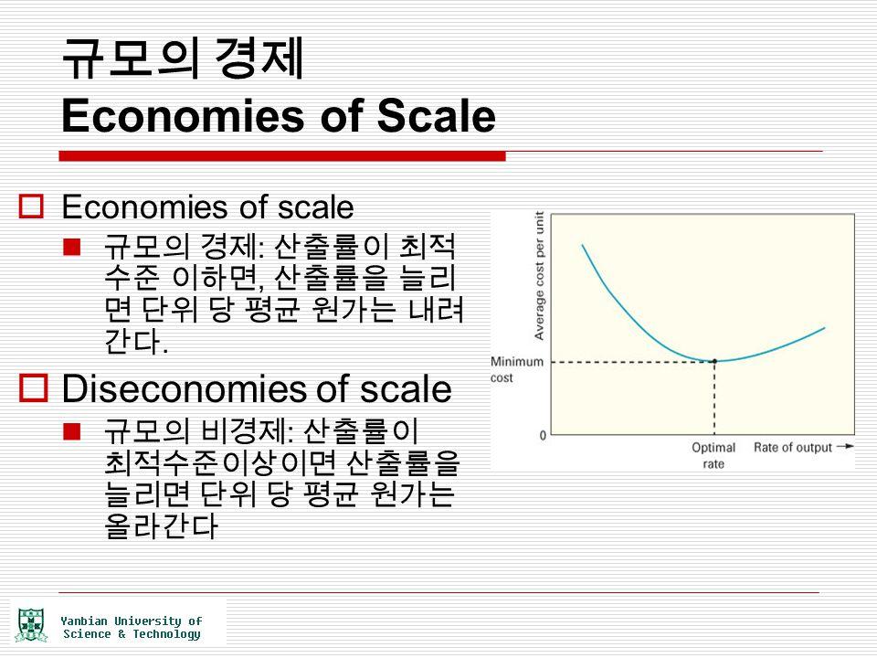 규모의 경제 Economies of Scale