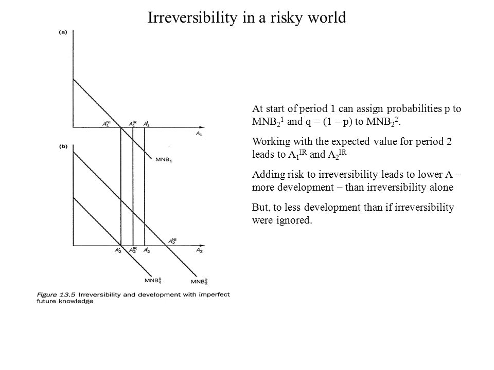 Irreversibility in a risky world