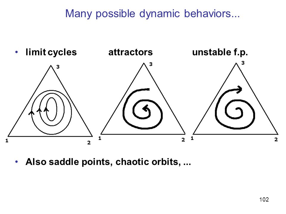 Many possible dynamic behaviors...