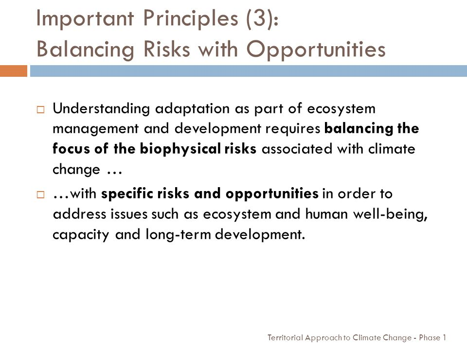 Important Principles (3): Balancing Risks with Opportunities